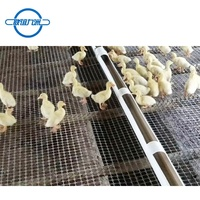 High quality pet pp mesh plastic composite geogrid for breeding duck