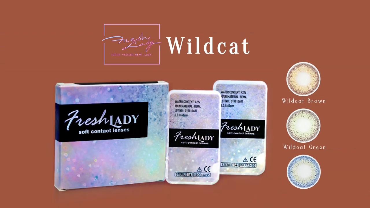 Wildcat Freshlady cosméticos Cor Da Lente de Contato Por Atacado