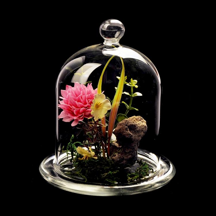 Layar Kaca Bell Dome Diawetkan Bunga Mawar dengan Hitam Coklat & Natural Dasar Kayu