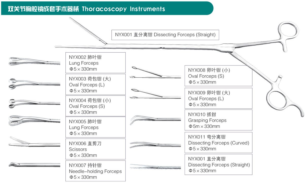 Surgical Medical Instruments Thoracoscopy Instruments Dissecting Forceps High quality