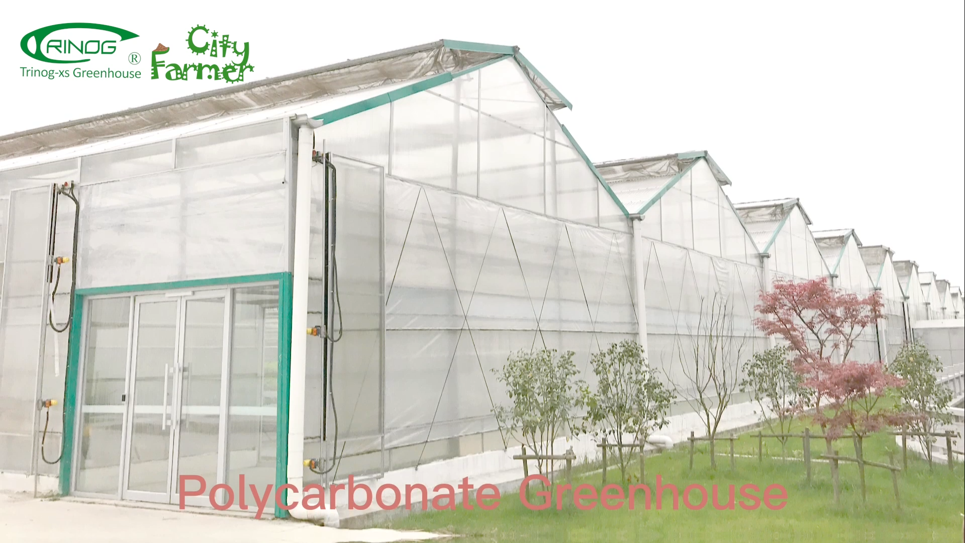 Trinog Sun Shade  Aluminum farme Polycarbonate greenhouses for farm