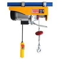 Mini 1000 kg Portable Micro Wire Rope Motor Lift Electric Hoist PA1000 For Sale