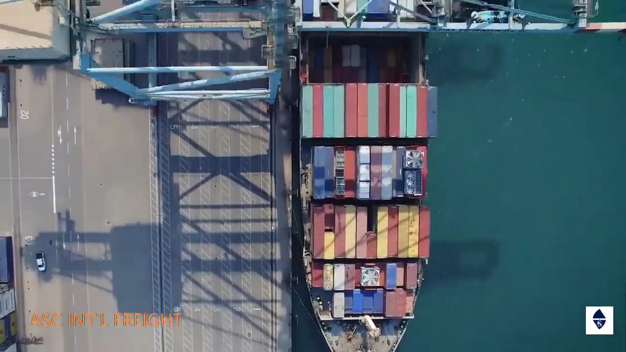 Самый дешевый морской фрахт из Китая в Индию высокоэффективный морской агент сервис