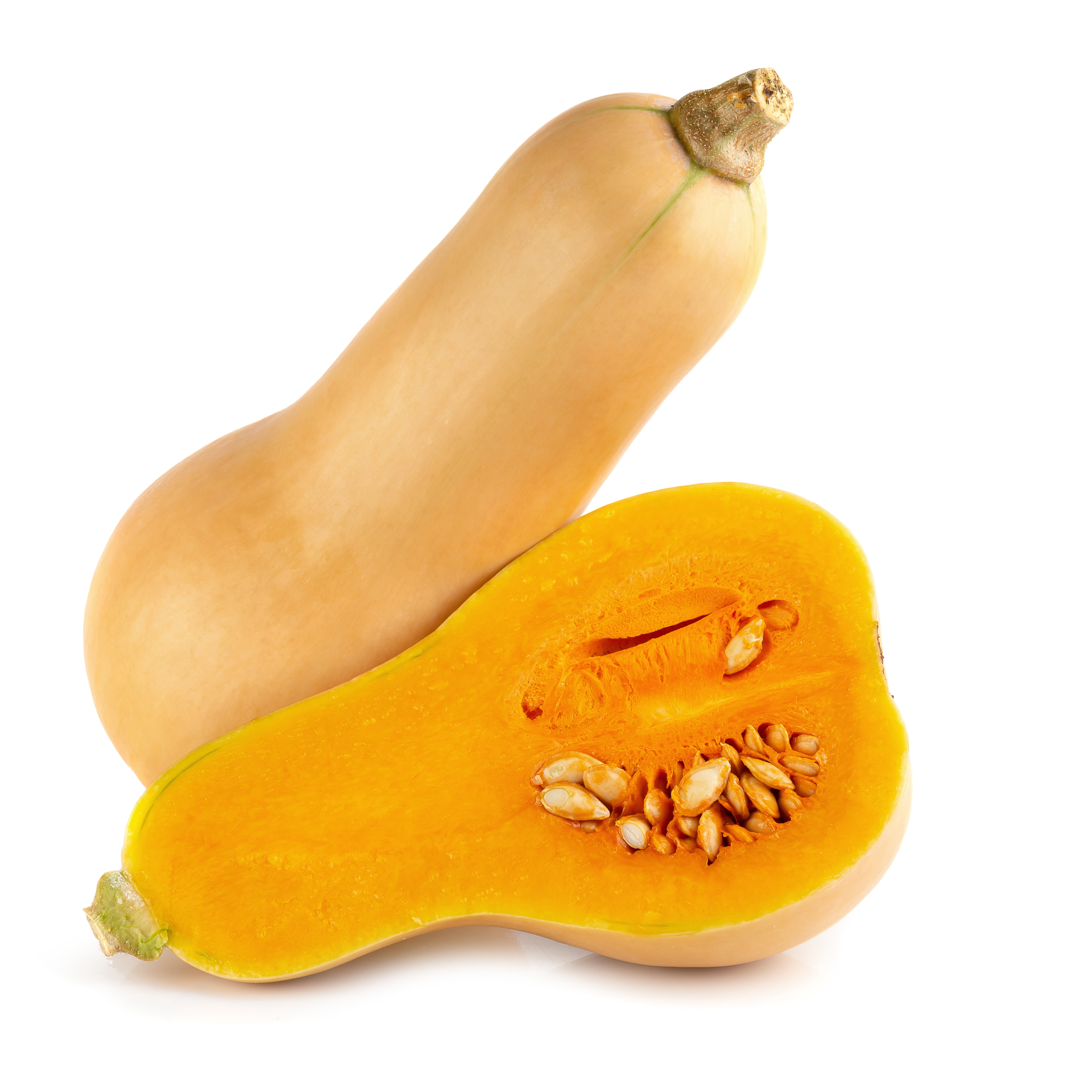 Wholesale Perfect Pact Fresh Butternut Squash sourced from family farms in the USA