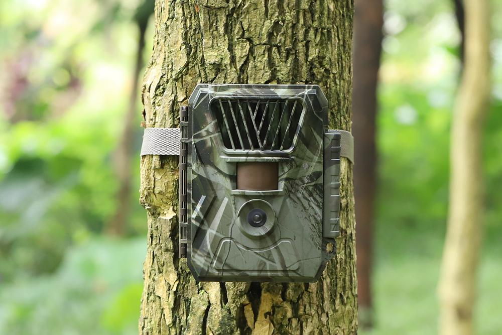 Cheap 24MP Wild Deer Hunting Animal Trap Battery Powered No glow game camera