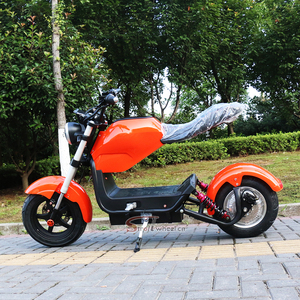 Europe warehouse to door New EEC/COC Citycoco 3000W electric scooter with eec certificate