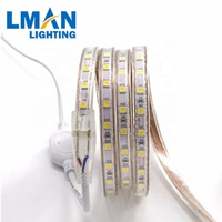 led strip 220v 5050 tape light ip65 high brightness high cri indoor outdoor decorate flexible banding strip