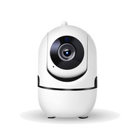Home Security AI Intelligence Automatic Tracking Control Panoramic 1080P Wifi IP Camera