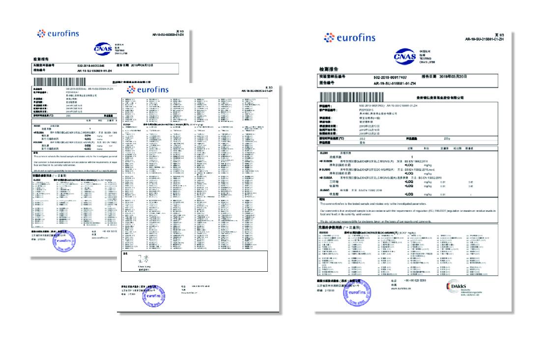 Premium Quality Certified Organic Black Tea in Corn Fiber Tea Bag - 4uTea | 4uTea.com