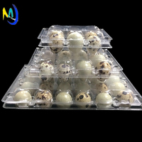 Carton packing box Plastic blister quail egg packing box /quail egg tray for sale
