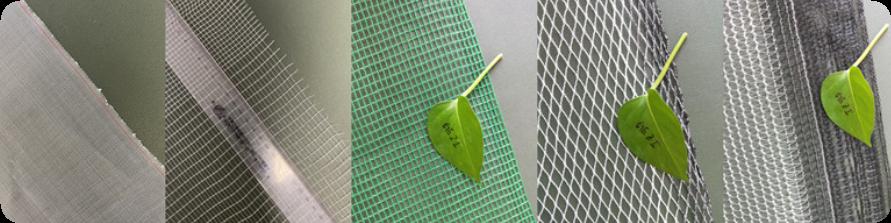 100% ใหม่HDPEพลาสติกฟาร์มผักป้องกันแมลงตาข่ายตาข่ายสำหรับเรือนกระจกแมลงสุทธิ