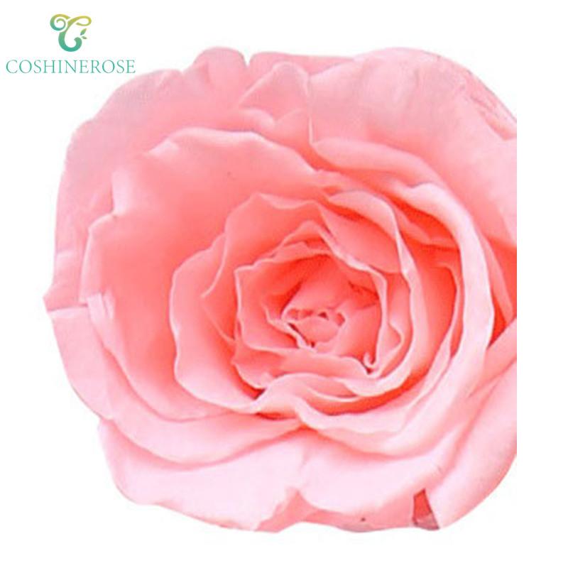 Yongsheng ดอกไม้แห้งดอกไม้ขายส่ง diy ผู้ผลิตจำลอง rose 2-3 ซม.ดอกไม้หัวโดยตรงขาย flo