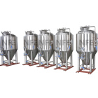 grain fermenting used beer brewing fermentation tank with CIP cleaning system