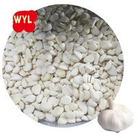 Reliable price Peeled IQF Frozen Garlic
