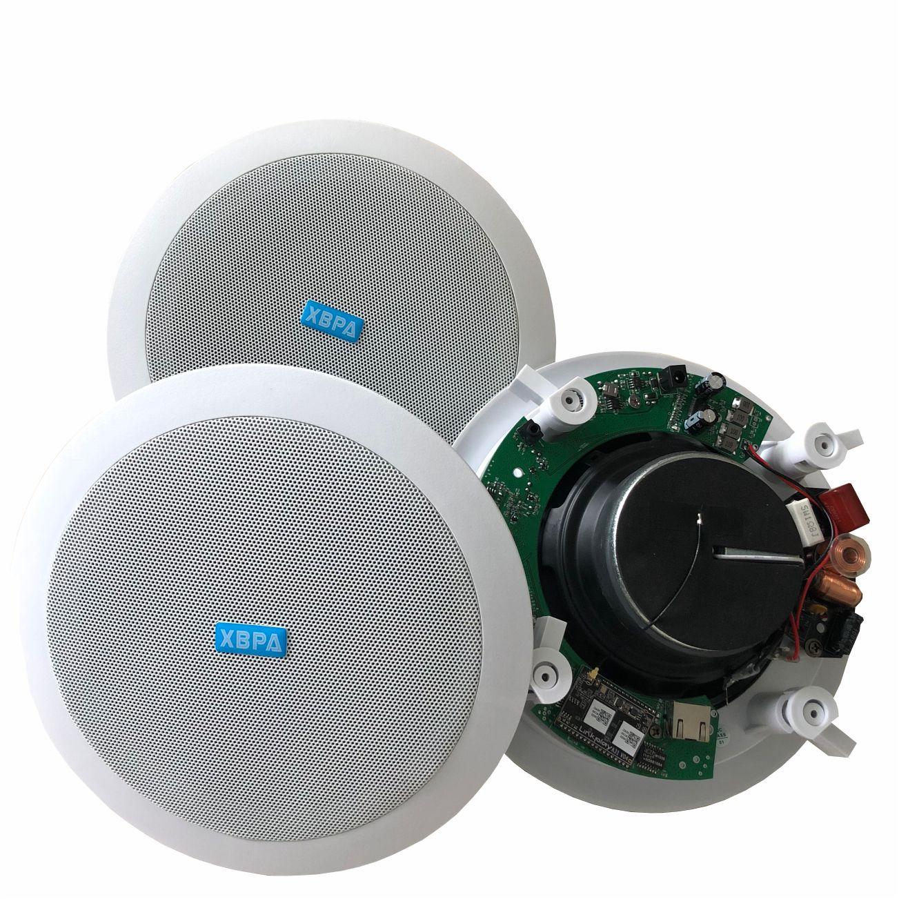 Главная фоновая музыкальная система производитель продуктов включают настенный усилитель мощности и потолочный WIFI динамик