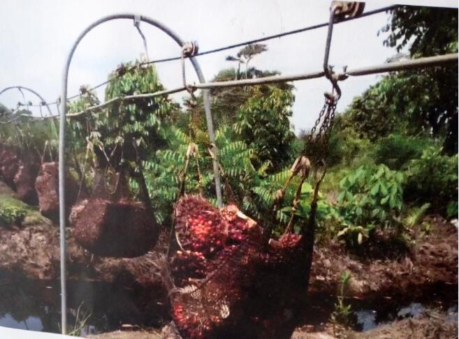 Garrucha used in plantation shipping cable system Jinnaike Hardware