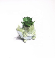 Home and garden flower pot cheap price Tortoise animal shape ceramic succulent plant pot