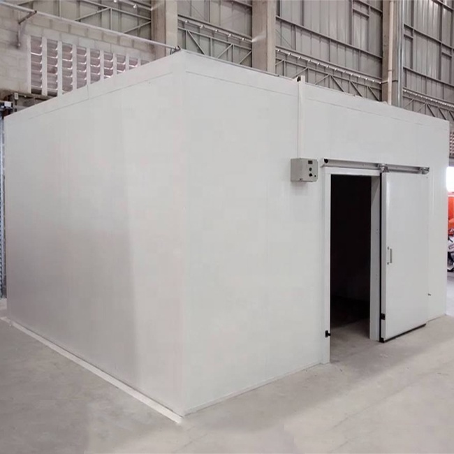 Containerized pollo blast freezer