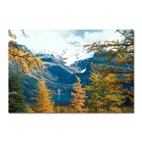 Customized Canvas Printing Service Photography Giclee Printing