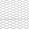 /product-detail/anping-hexagonal-chicken-wire-mesh-for-poultry-stucco-wire-mesh-1600052109178.html