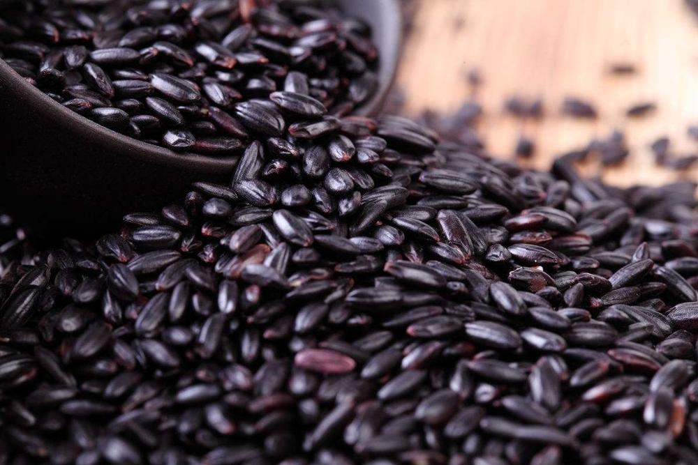 organic high quality black rice for health