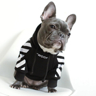 Luxury Pet Clothes Warm Hoodie Custom Fashion Winter Designers Dog Clothes