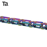 TANAI Hardware custom color rainbow iron metal chain for handbag bags