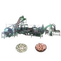 Full Automatic Cashew Nut Processing Machine