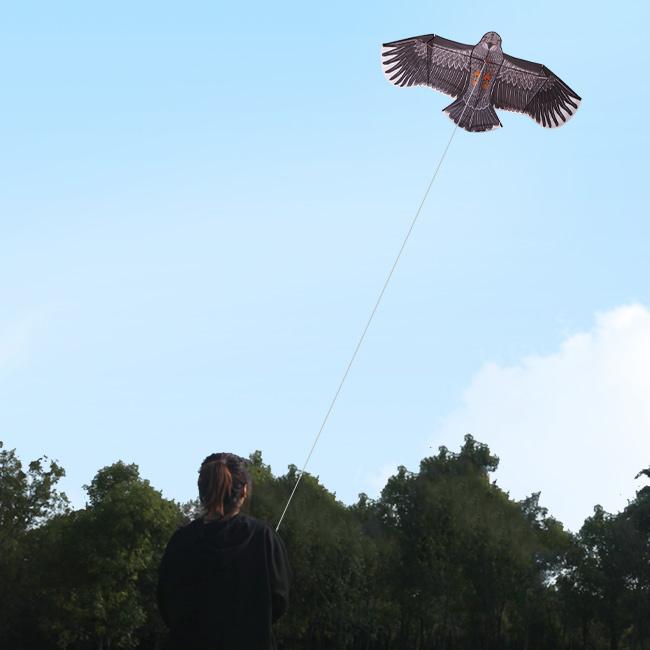Оптовая продажа Yongjian кайт высокое качество Спорт на открытом воздухе легкий Летающий детский Животное орел китайский кайт от Weifang кайт