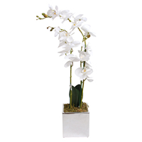 Beautiful White Silk Phalaenopsis Flower Arrangement Artificial Orchid Plant For Wedding Party Home Garden Decor