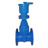 High Quality Gate Valve Dn100 For Hdpe Pipe