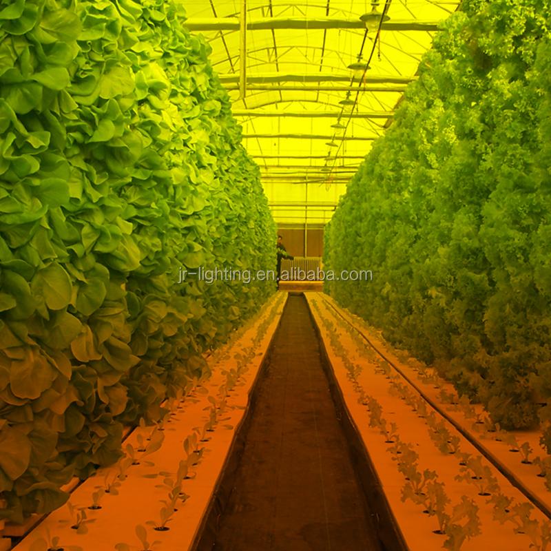 Good Quality 1000 watt hps grow light High Pressure Sodium Grow Lights Lowes