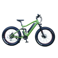 2019 most popular fat tire electric bike for sales