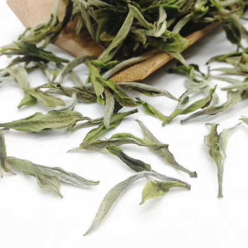 Greatest Anti-Aging Pai Mu Tan White Tea of Fuding - 4uTea | 4uTea.com