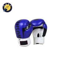 Factory direct sales design your own lace up boxing gloves set