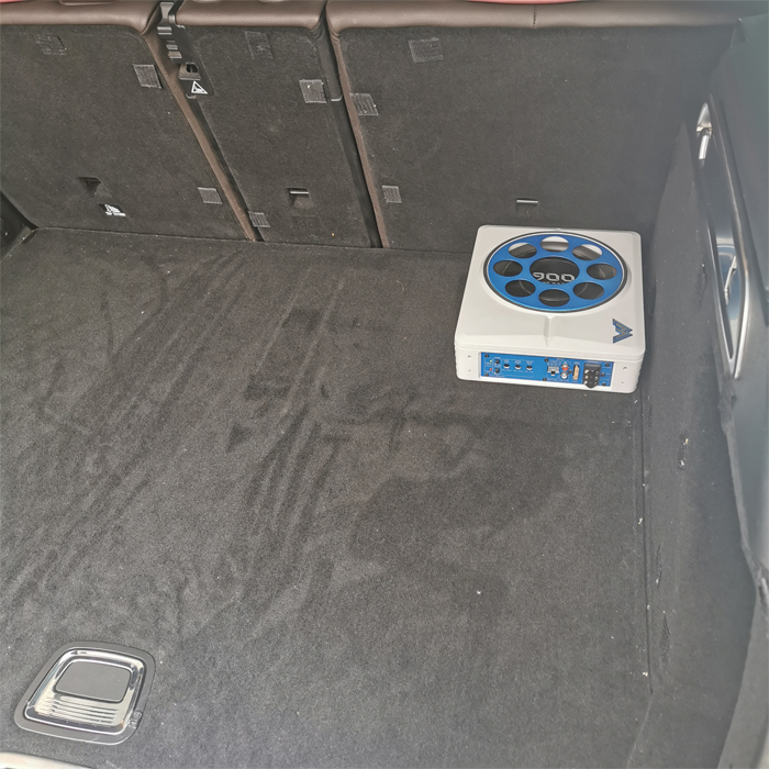 8 Inch Amplifier 250W Subwoofer Under Seat Car Active Powered Subwoofer
