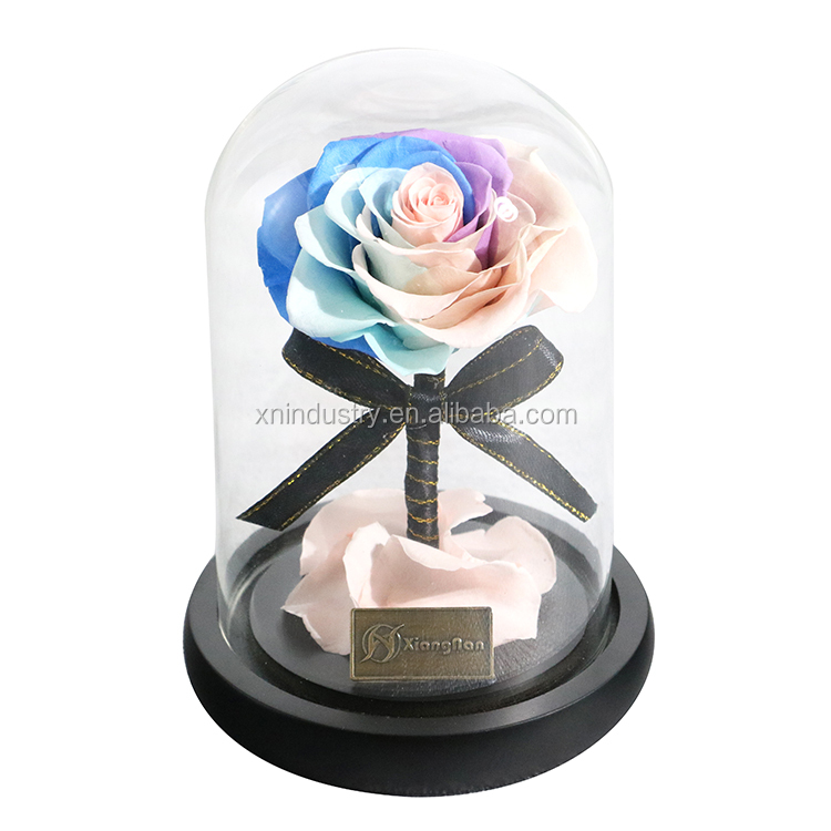 The latest mini little prince with gift box real roses preserved glass dome wholesale preserved <strong>flower</strong>
