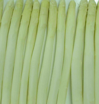 Haccp Kosher Fda Seasonal China Iqf Frozen White Asparagus Buy Frozen White Asparagus Fresh White Asparagus China Asparagus Product On Alibaba Com