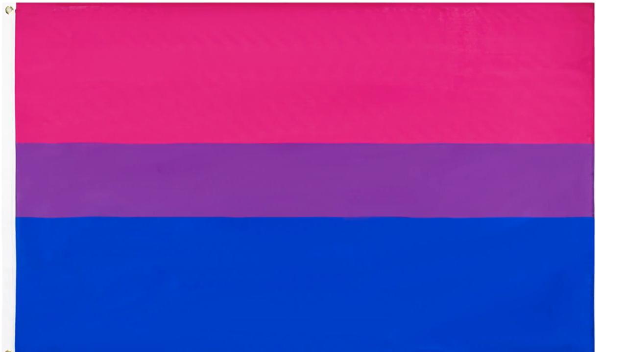 Bisexual Pride Flag Sketchbook