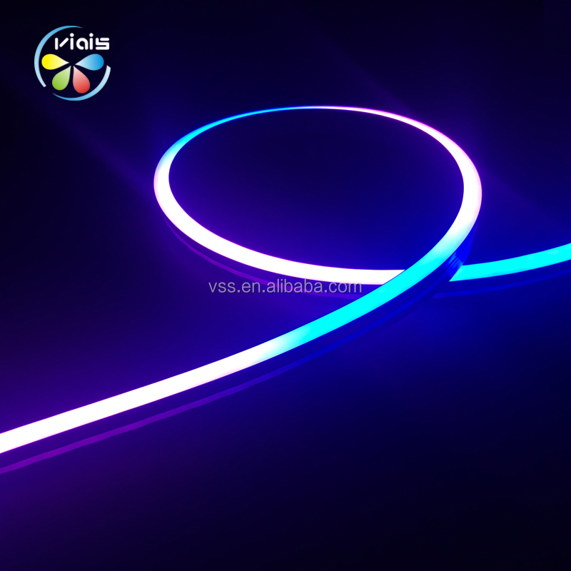 DC12V Programmable Addressable Fleksibel RGB Neon WS2812B LED Strip