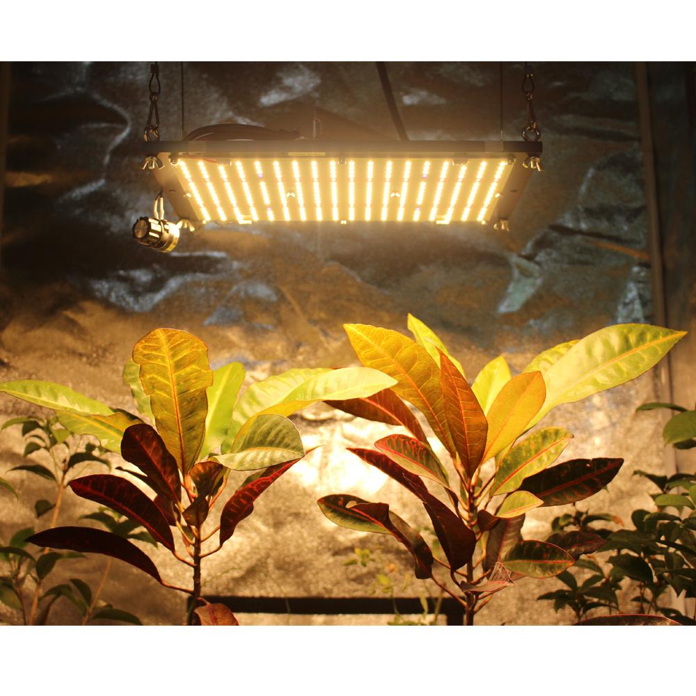 2020 top sale Samsung LM301H full spectrum DIY quantum LED Samsung MW Hseries driver  120W LED grow light for vertical farm