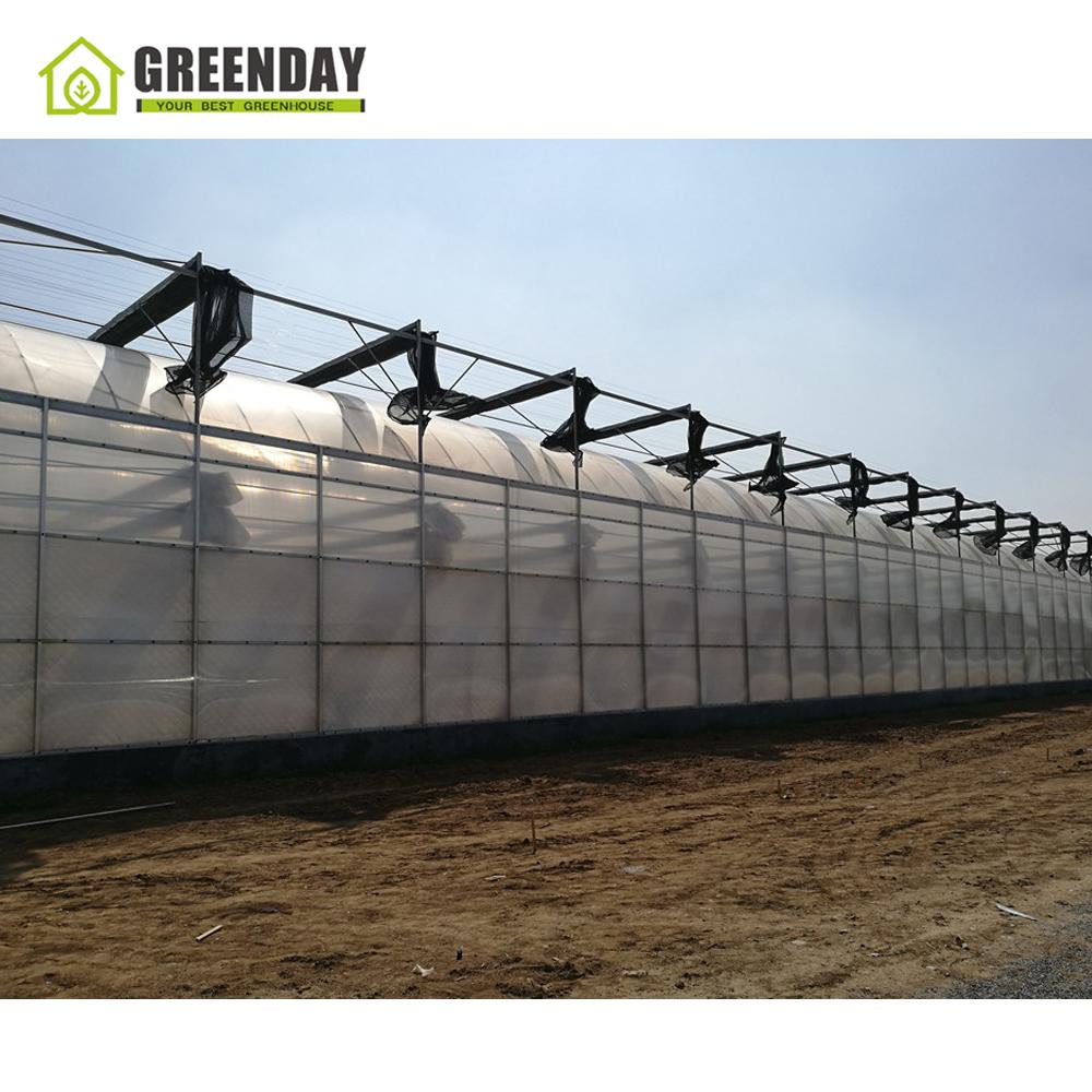 Costruire Una Mini Serra Riscaldata trova le migliori serra riscaldata fai da te produttori e