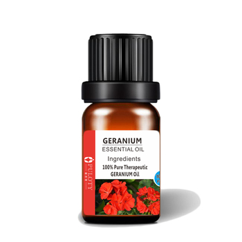 Beauty Skin Natural Essential Oil Brand Rose Geranium Essential Oil For Sale
