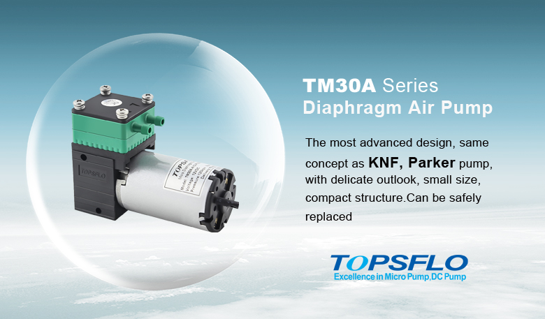 diaphragm air pump.jpg
