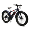 48V 500W rear motor fat boy electric bike
