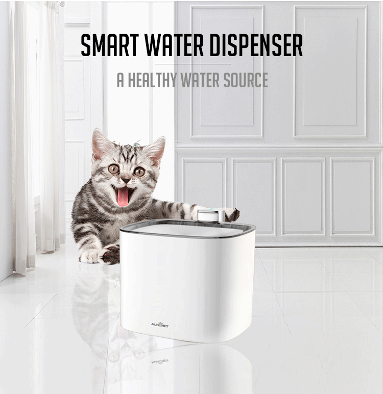 Double clean and healthy automatic smart pet water feeder