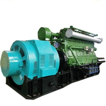 China supplier MW wood chips/rice husk used biomass power plant