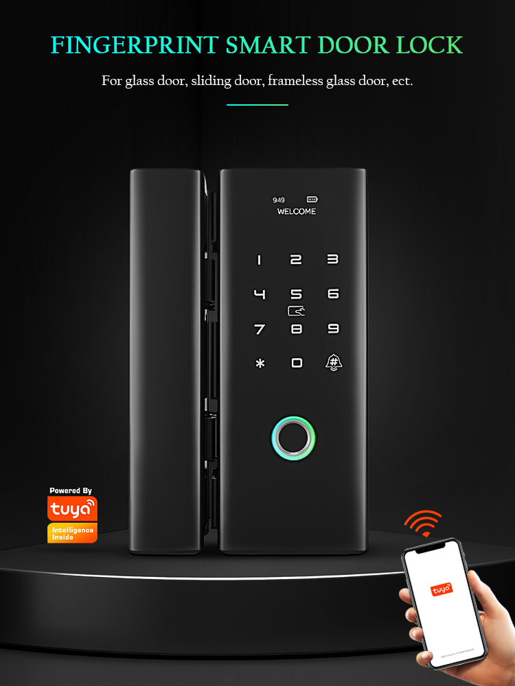Tediton WiFi Remote Control Tuya app biometric fingerprint digital Smart glass door lock for Office