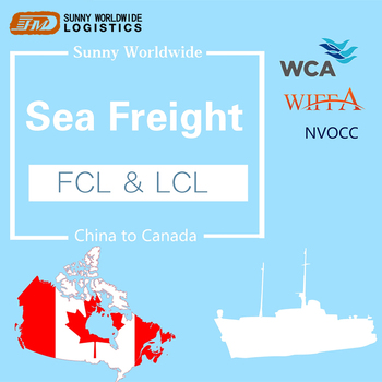 Professional International Shipping Door To Door Service  From China To Canada