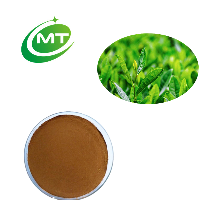Best price Organic natural high quality Free Sample Tea Tree Extract